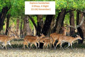 Explore Sundarban